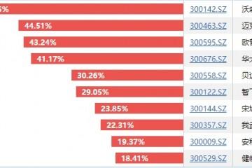 创业板指进入技术性牛市!成分股涨幅榜出炉