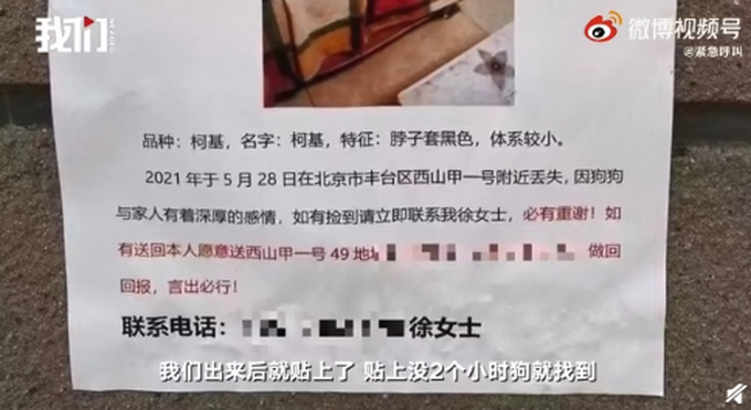 狗主人回应寻狗送北京房产是送狗回家有重谢打印店误打成送房